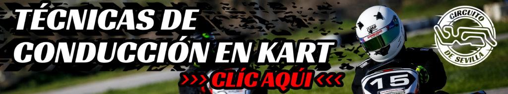 BOTON ACCEDER A TECNICAS DE CONDUCCION KARTING SEVILLA